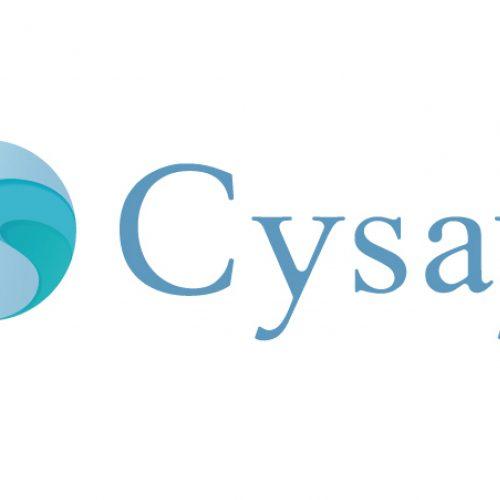 Tập đoàn Cysay
