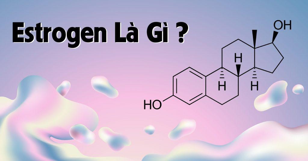 Nội tiết tố nữ estrogen là gì
